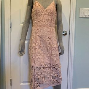 NWT JOA Fitted Lace Panel Dress Sz. Med
